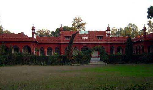 islamia-college-chiniot